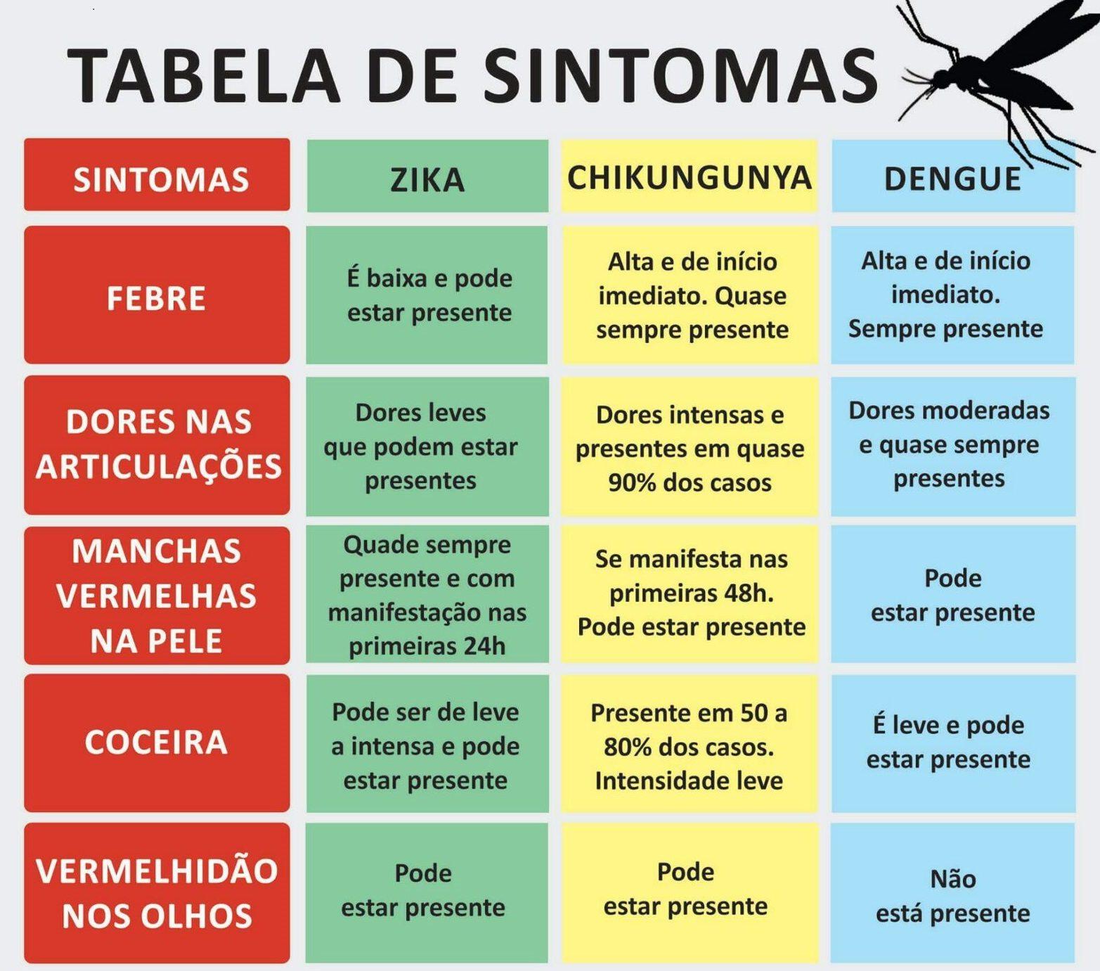 Zika e dengue