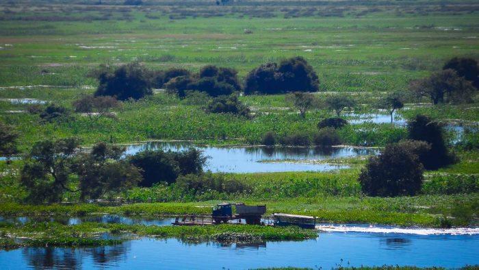 pantanal_