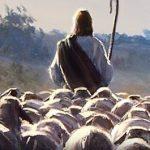 Mensagem Para Pastor
